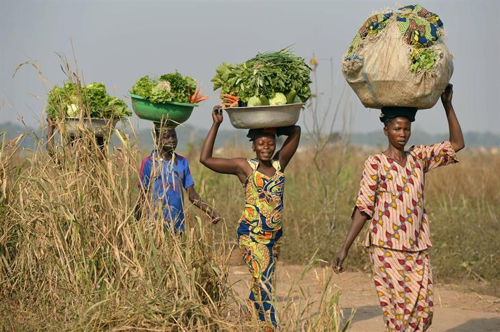 Central African Republic Women Agriculture